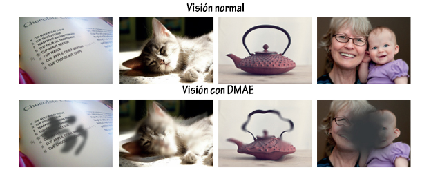 dmae1 (1)